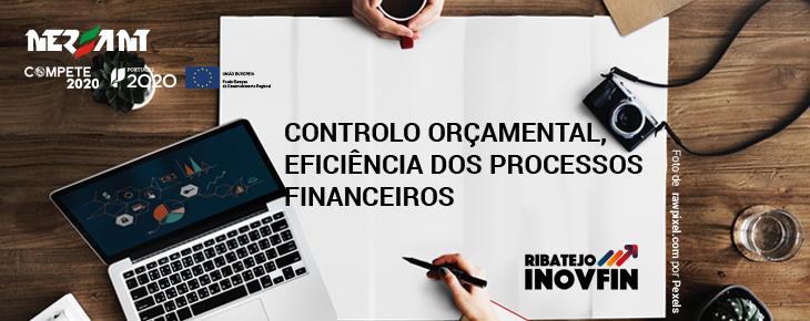 Controlo Orçamental, Eficiência dos Processos Financeiros